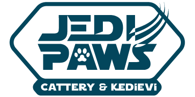 Jedi Paws Cattery Kedievi