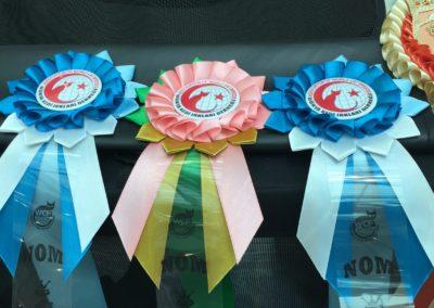 Yarışmadan ödüller