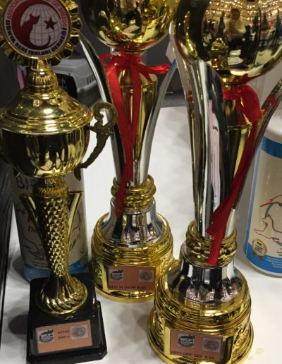Yarışma ödüllerimiz